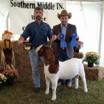 FNHR El Grande's first Overall Grand Champion title...
