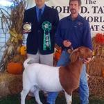 Wins his first Overall GC Buck title at 8 months of age.....not to bad.....