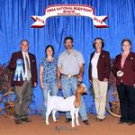 FNHR Top Shelf wins her class at the 2012 ABGA Nationals.....