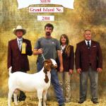 QB Threatcon Delta places 6th at 2014 ABGA Nationals.....  Sire of FNHR Delta Force........