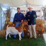 Getting better with time.........  Gretchen was the Overall Grand Champion at Goats, Music, and More Show.......